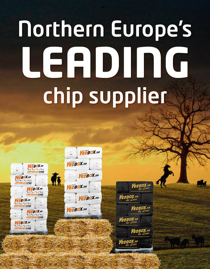 Northern Europe's leading chip supplier