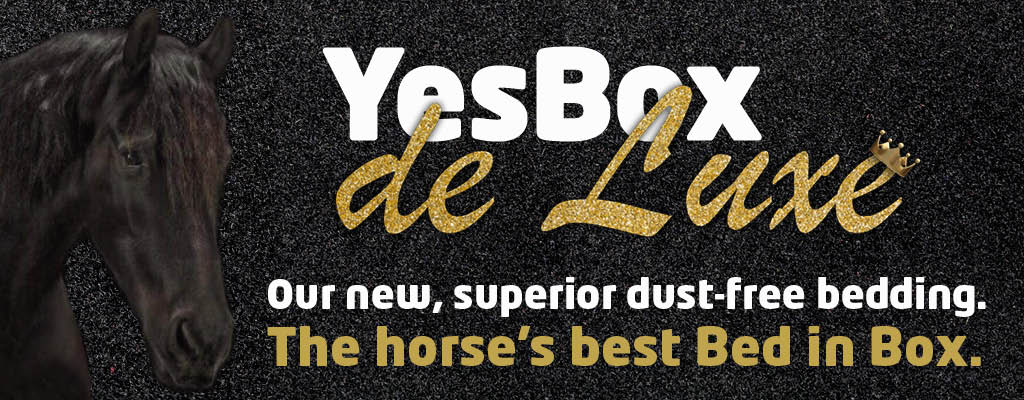 YesBox deLuxe completely dust-free bedding